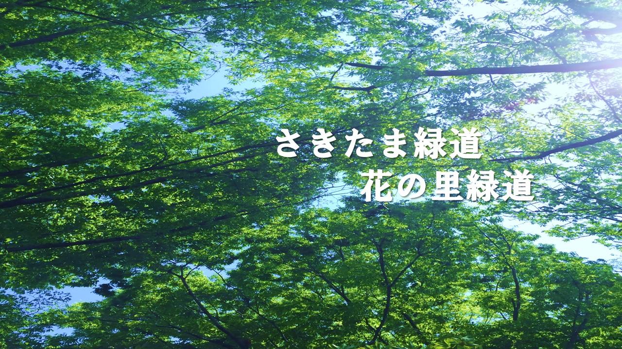 埼玉県営さきたま緑道・花の里緑道